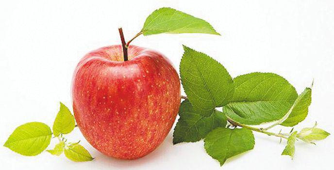 因此,三月份苹果树管理要做好肥水和病虫害管理.