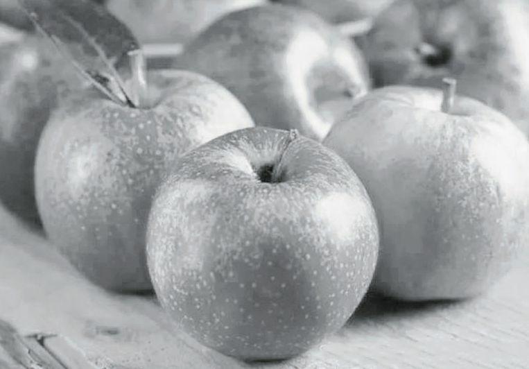 清洁生产技术 种出生态苹果 - 平阴玫瑰甲天下 - 我心永恒博客乐园 平阴玫瑰甲天下
