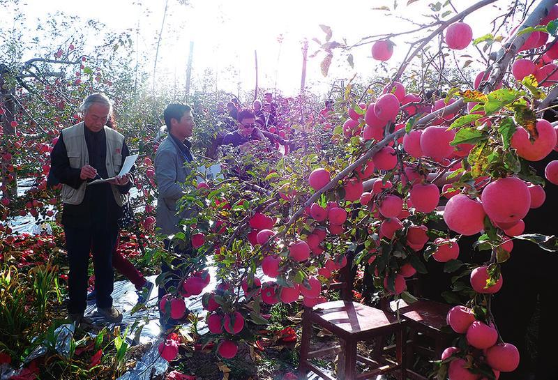 中国科学网 www.minimouse.com.cn